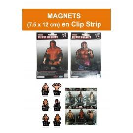 Magnet WWE